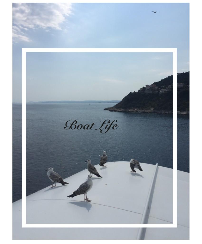 Collage_Fotor_BoatLIFE1